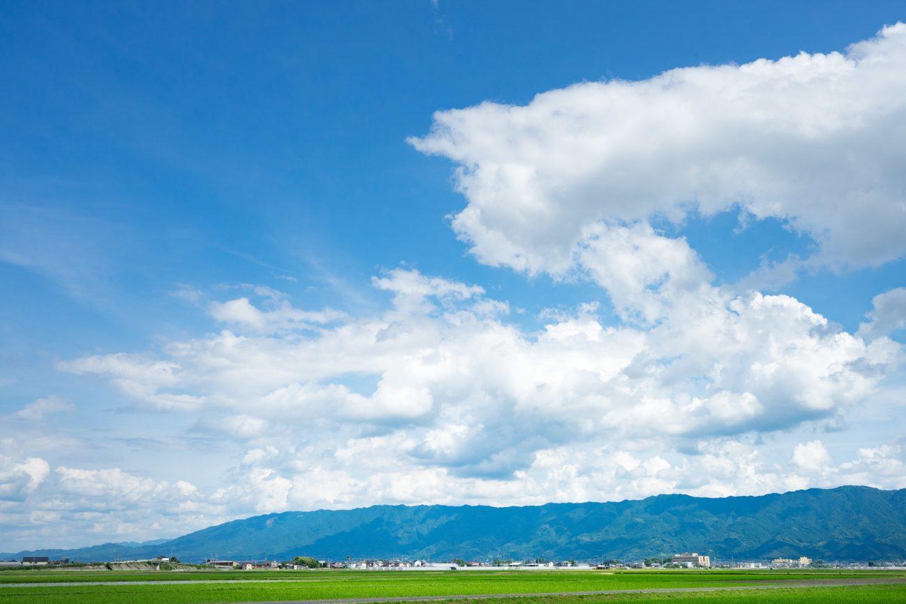 7月31日:夏休みのおしらせの画像